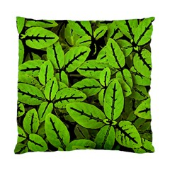 Nature Print Pattern Standard Cushion Case (two Sides)