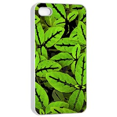 Nature Print Pattern Apple Iphone 4/4s Seamless Case (white)