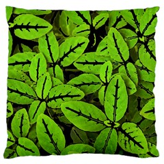 Nature Print Pattern Large Cushion Case (one Side)