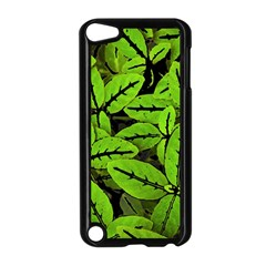 Nature Print Pattern Apple Ipod Touch 5 Case (black)
