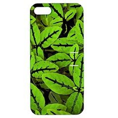 Nature Print Pattern Apple Iphone 5 Hardshell Case With Stand