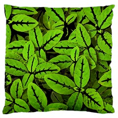 Nature Print Pattern Large Flano Cushion Case (one Side)