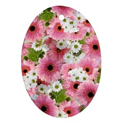 Pink Flower Bg 2 Ornament (oval)
