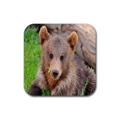 Baby Bear Animals Rubber Square Coaster (4 Pack)