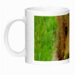 Baby Bear Animals Night Luminous Mugs