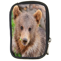Baby Bear Animals Compact Camera Cases