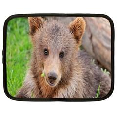 Baby Bear Animals Netbook Case (xxl)