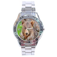 Baby Bear Animals Stainless Steel Analogue Watch