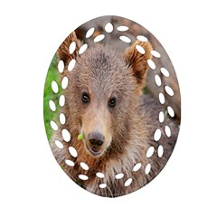 Baby Bear Animals Oval Filigree Ornament (two Sides)