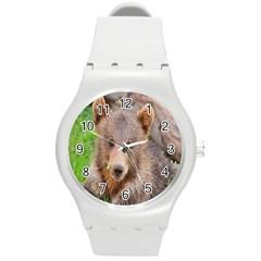 Baby Bear Animals Round Plastic Sport Watch (m)