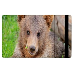 Baby Bear Animals Apple Ipad 3/4 Flip Case