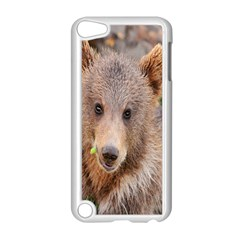 Baby Bear Animals Apple Ipod Touch 5 Case (white)