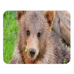Baby Bear Animals Double Sided Flano Blanket (large)