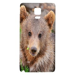 Baby Bear Animals Galaxy Note 4 Back Case