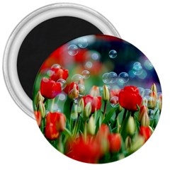 Colorful Flowers 3  Magnets