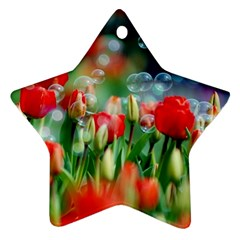 Colorful Flowers Star Ornament (two Sides)