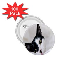 Cat Face Cute Black White Animals 1 75  Buttons (100 Pack)