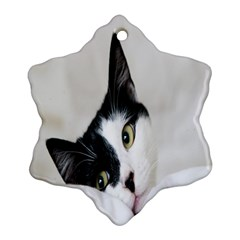 Cat Face Cute Black White Animals Ornament (snowflake)