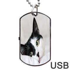Cat Face Cute Black White Animals Dog Tag Usb Flash (one Side)