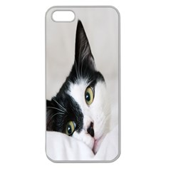Cat Face Cute Black White Animals Apple Seamless Iphone 5 Case (clear)