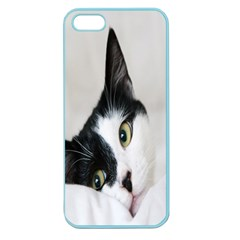 Cat Face Cute Black White Animals Apple Seamless Iphone 5 Case (color)