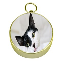 Cat Face Cute Black White Animals Gold Compasses
