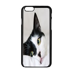 Cat Face Cute Black White Animals Apple Iphone 6/6s Black Enamel Case