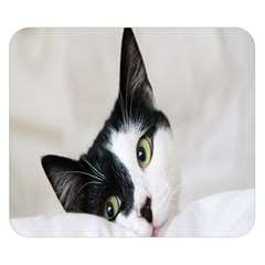 Cat Face Cute Black White Animals Double Sided Flano Blanket (small)