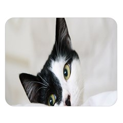 Cat Face Cute Black White Animals Double Sided Flano Blanket (large)