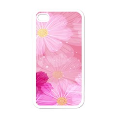 Cosmos Flower Floral Sunflower Star Pink Frame Apple Iphone 4 Case (white)