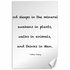 Inspirational Quote (arthur Young) Canvas 24  X 36