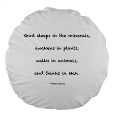 Inspirational Quote (arthur Young) Large 18  Premium Flano Round Cushions