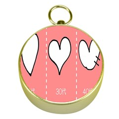 Love Heart Valentine Pink White Sexy Gold Compasses