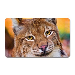 Tiger Beetle Lion Tiger Animals Magnet (rectangular)