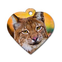 Tiger Beetle Lion Tiger Animals Dog Tag Heart (two Sides)