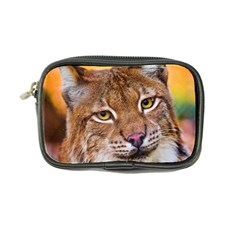 Tiger Beetle Lion Tiger Animals Coin Purse