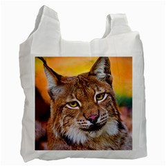 Tiger Beetle Lion Tiger Animals Recycle Bag (two Side)