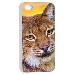 Tiger Beetle Lion Tiger Animals Apple Iphone 4/4s Seamless Case (white)