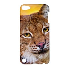 Tiger Beetle Lion Tiger Animals Apple Ipod Touch 5 Hardshell Case