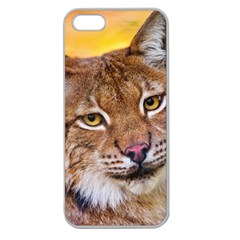 Tiger Beetle Lion Tiger Animals Apple Seamless Iphone 5 Case (clear)