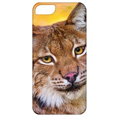 Tiger Beetle Lion Tiger Animals Apple Iphone 5 Classic Hardshell Case