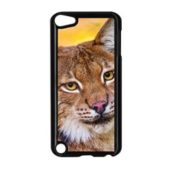 Tiger Beetle Lion Tiger Animals Apple Ipod Touch 5 Case (black)