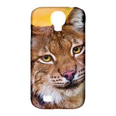 Tiger Beetle Lion Tiger Animals Samsung Galaxy S4 Classic Hardshell Case (pc+silicone)