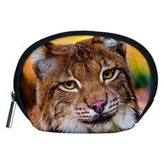 Tiger Beetle Lion Tiger Animals Accessory Pouches (medium)