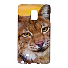 Tiger Beetle Lion Tiger Animals Galaxy Note Edge