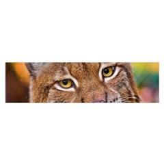 Tiger Beetle Lion Tiger Animals Satin Scarf (oblong)