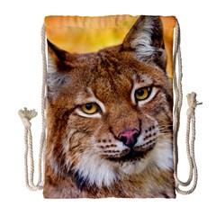 Tiger Beetle Lion Tiger Animals Drawstring Bag (large)