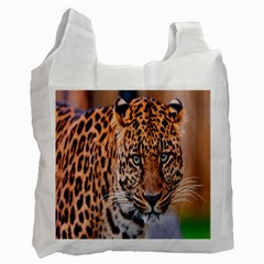 Tiger Beetle Lion Tiger Animals Leopard Recycle Bag (two Side)