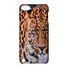 Tiger Beetle Lion Tiger Animals Leopard Apple Ipod Touch 5 Hardshell Case With Stand