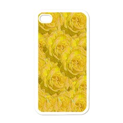 Summer Yellow Roses Dancing In The Season Apple Iphone 4 Case (white)